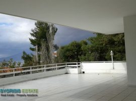Luxury Maisonette - Athens, Kifissia, Politia • Πολυτελής Μεζονέτα - Αθήνα, Κηφισιά, Πολιτεία